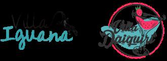 Logo zusammen Iguana Daiquiri